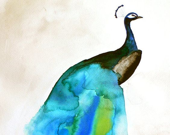 SALE 15 Off  Peacock Painting  Peacock II  Limited by MaiAutumn, $29.75
