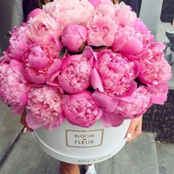 Peonies In A Box With Images Peonies Flowers Pink Peonies