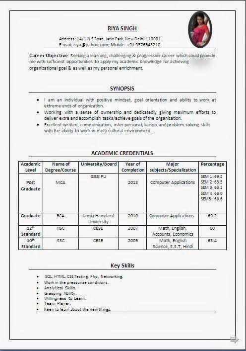 curriculum vitae student Sample Template Example ofExcellent - economics major resume