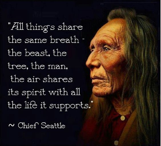 """""""All Things Share The Same Breath • The Beast, The Tree, The Man • The Air Shares The Spirit With All The Life It Supports •"""" ~Chief Seattle"""