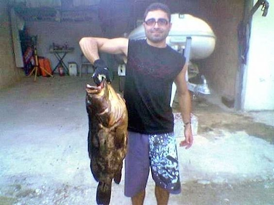 Grouper 12k in Zakynthos