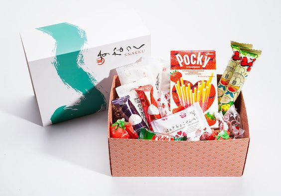Travel Subscription Boxes: Snakku