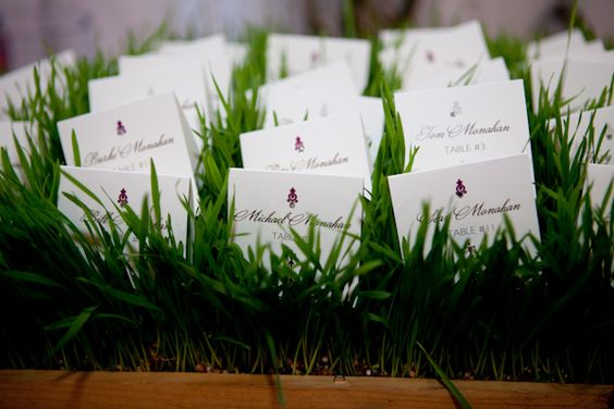 Wedding seating cards placed on green grass, photo by La Vie Photography