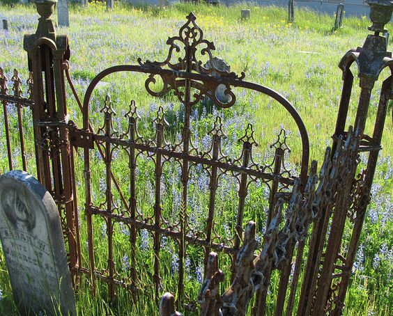 Love this old rusty gate!
