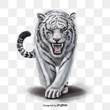 O Tigre Animal O Tigre Animais Selvagens Imagem Png E Vetor Para Download Gratuito White Tiger Cat Background Cute Animal Drawings