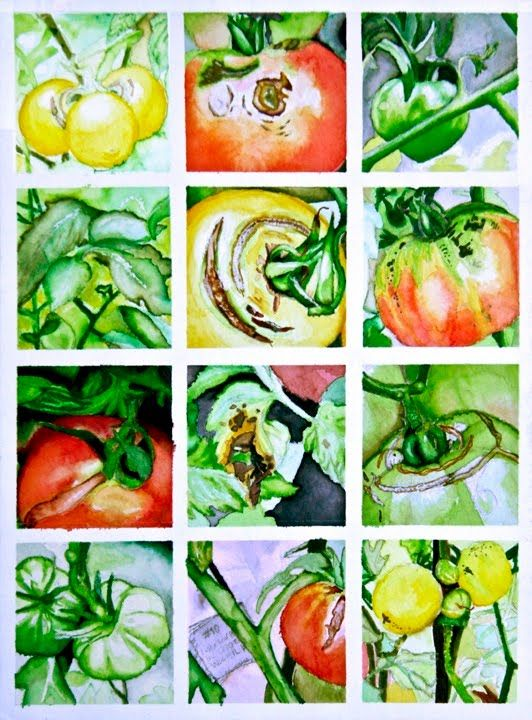 Repetition with Variation- Tomato Plants!  Breadth - Maggie Olsen:
