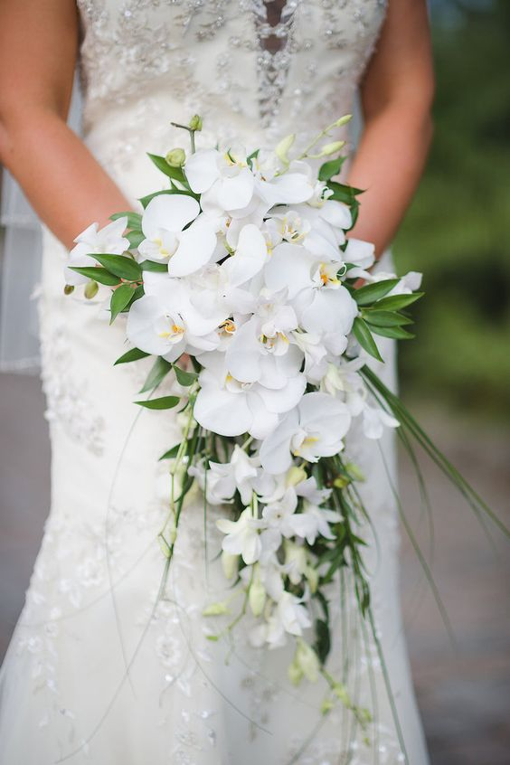 Bridal wedding portait with white orchid cascading wedding for Bridal flower bouquets ideas