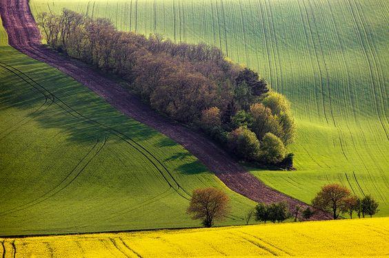 500px / Photo Moravian Spring II by Martin Rak