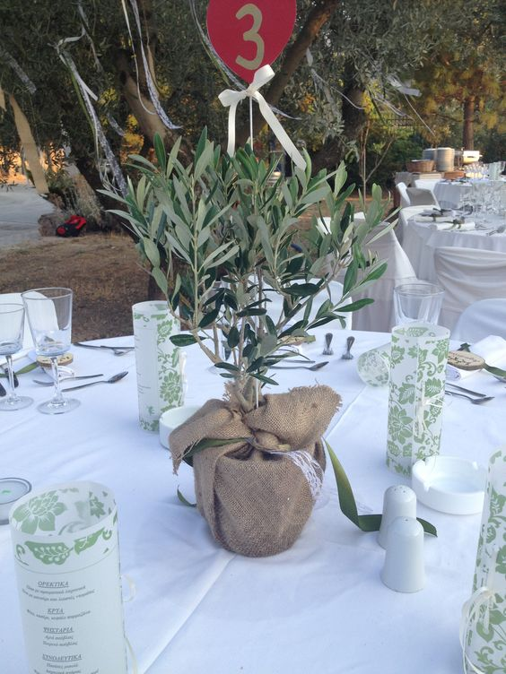 Olive tree centerpiece wed decor by i vamvakari