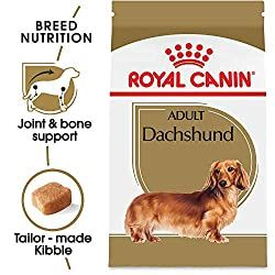 Most Nutritious And Delicious Dachshund Food Products Available On The Market Floppy The Dachshund Dog Food Recipes Dry Dog Food Royal Canin Dog Food
