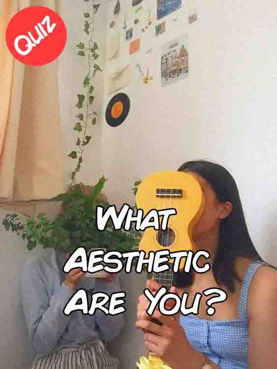 What Aesthetic Are You Aesthetic Quiz Quizzes For Fun What S My Aesthetic
