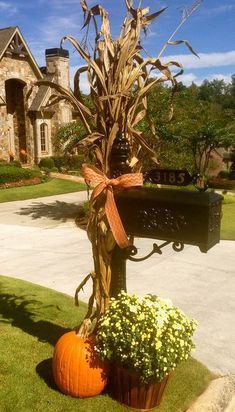 Fall outside decoration. Corn stalk over the...: