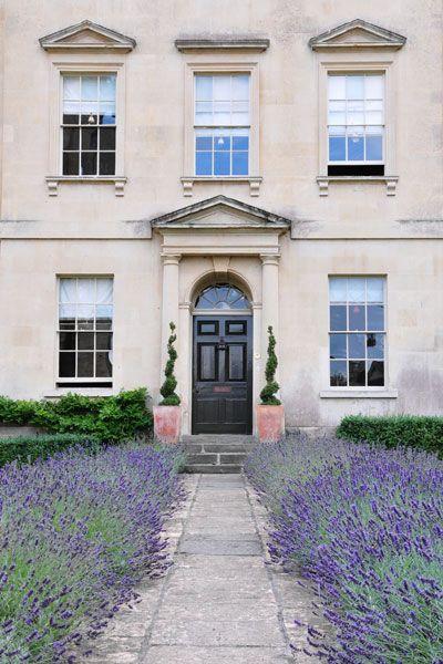 Lavender front door garden