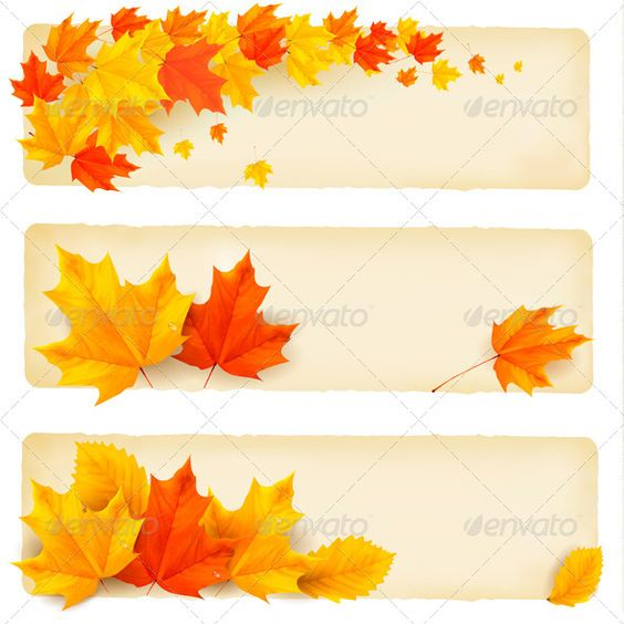 Three autumn banners with colorful leaves  Vector   #GraphicRiver         Three autumn banners with colorful leaves. Vector. Fully editable, vector objects separated and grouped, no blends, gradient mesh used     Created: 31August12 GraphicsFilesIncluded: VectorEPS Layered: Yes MinimumAdobeCSVersion: CS Tags: abstract #autumn #background #banner #blank #board #border #card #color #colorful #concept #decoration #decorative #design #floral #leaf #leaves #message #nature #outdoor #park #school…
