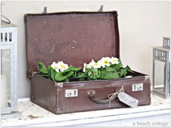 deko ideen für den alten koffer blumenpflanzer benutzen