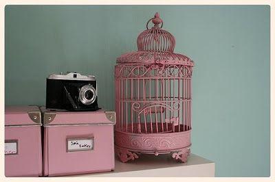 Gaiolas de Pássaros - Bird Cages