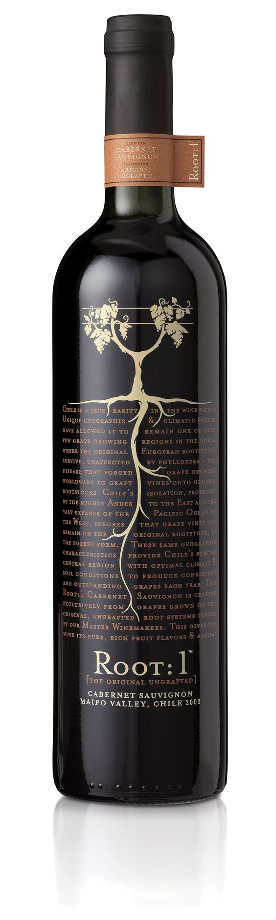 """Root:1 tells the story of the original ungrafted Cabernet Sauvignon rootstock, extinct in Europe and now found only in Chile. The rich history of the rootstock is visually linked to the final glass of wine, an image of which is hidden to the vine. As you read the story, the root leads you down to where it begins, beneath the soil."" - Root: 1, Turner Duckworth"