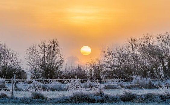 Sainte-Marie, au petit matin, soleil hivernal. 27 décembre 2016. © Dominique LEMOINE #Ardennes #France