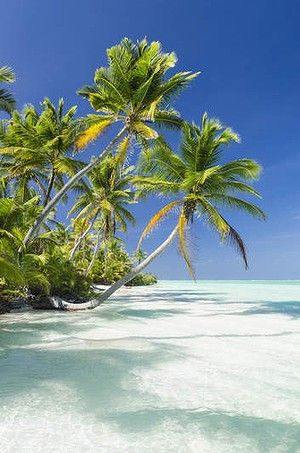 La isla del Coco en Costa Rica es una isla tropical y muy bonita: