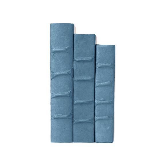 Blue Parchment Decorative Books