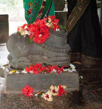Индия, день 5: наш индийский гид, храмы в Гоа, водопад, заповедник