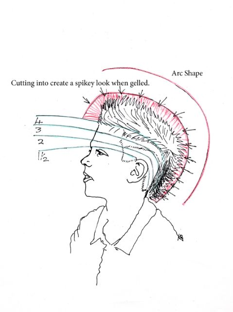 blank scalp diagrams