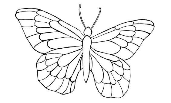 motyl kolorowanka, szablon motyla, motylki, kolorowanki dla dzieci, kolorowanki do wydruku, darmowe kolorowanki.