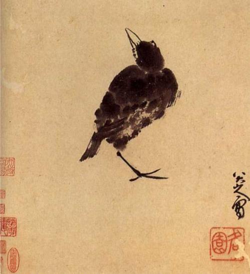 japanese raven