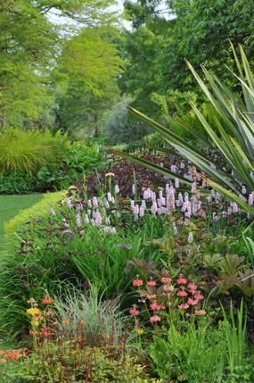 Beth Chatto: A Gardening Pioneer - A profile of a horticultural icon by Barney Bardsley ...
