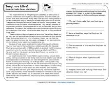 Printables Reading Comprehension Worksheets For Middle School printables free reading comprehension worksheets for middle school and fungi on pinterest are alive
