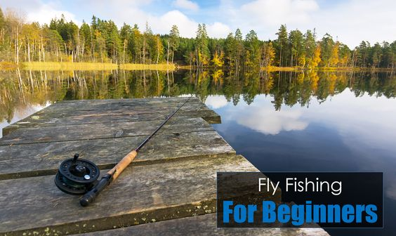 A beginner s guide to fly fishing tips for anglers just for Bass fishing for beginners