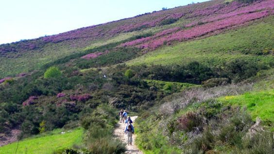 Walking the Camino de Santiago: A Beginner's Guide | Spain | OutsideOnline.com