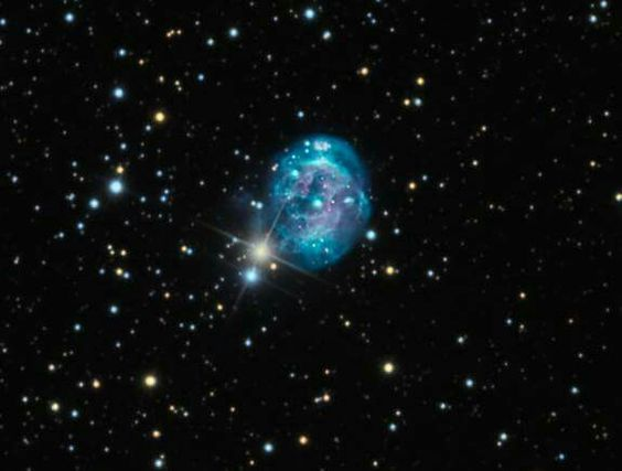 Fetus nebula