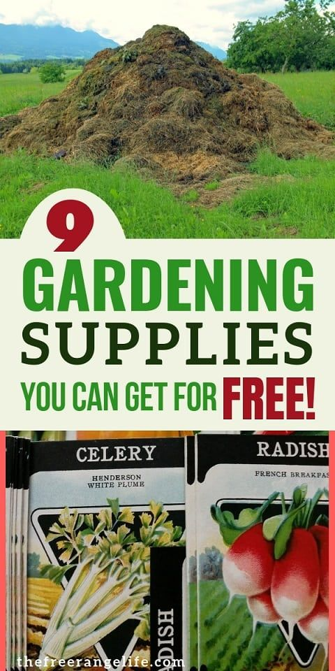 9 Gardening Supplies You Can Get For Free Vegetable Garden For