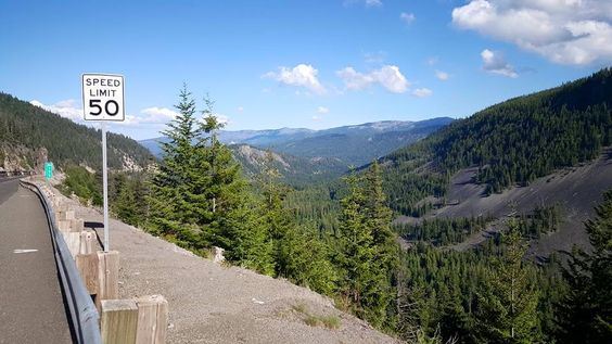 It was so quiet here. No cars, traffic, airplanes, noise; just the sound of the wind blowing through the beautiful evergreen trees on a warm summers' day. Copyright © 2015 by Natalie de Clare.