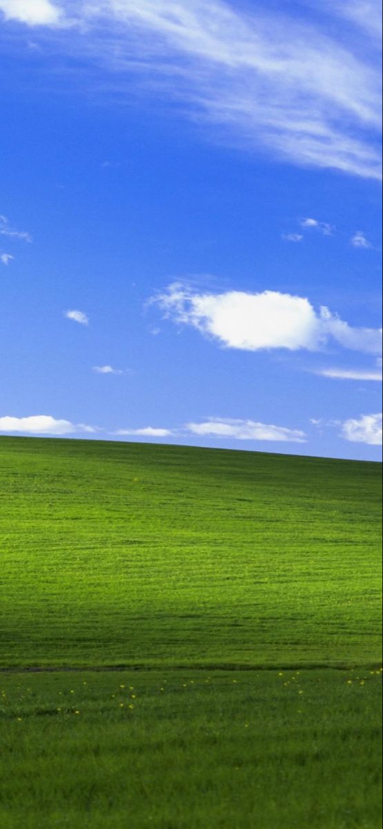 Windows In 2020 Computer Wallpaper Backgrounds Phone Wallpapers Wallpaper Downloads