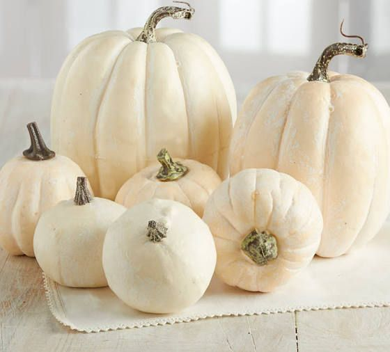 Faux White Pumpkins Primitive Decorating Country Farmhouse Fall Decor White Pumpkins