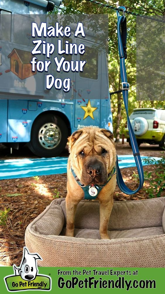Keeping you dog safe at your campsite, in the back yard, or at the park is a cinch with this easy DIY zip line! - Tap the pin for the most adorable pawtastic fur baby apparel! You'll love the dog clothes and cat clothes! <3