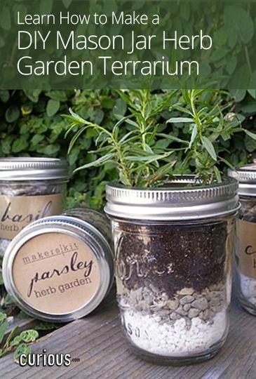Mason Jar Herbs Herbs Garden And Herbs On Pinterest