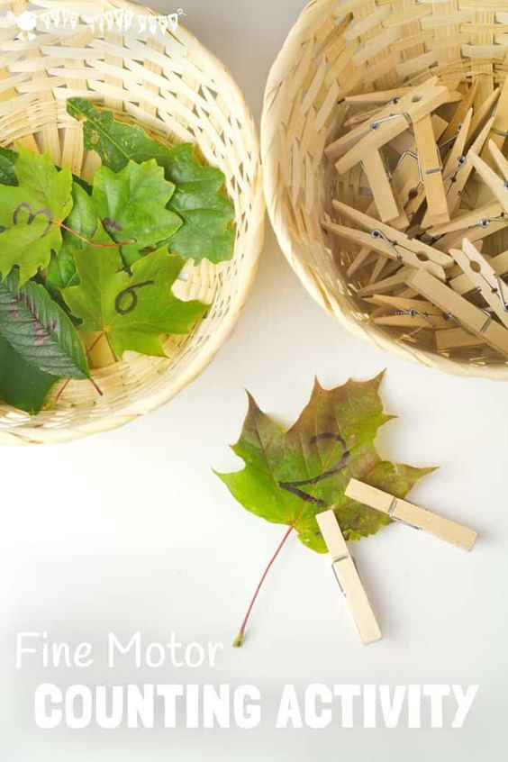 LEAF FINE MOTOR COUNTING ACTIVITY - Develop early years math skills with this fun leaf activity. This is a great Fall learning activity to develop fine motor skills, counting, number recognition and one to one correspondence. A fun Fall activity for preschoolers. #motorskills #math #learning #finemotorskills #natureactivities #naturecrafts #kidscraftsroom #kidsactivities #earlyyears #ECE #preschool #prek #preschoolactivities via @KidsCraftRoom