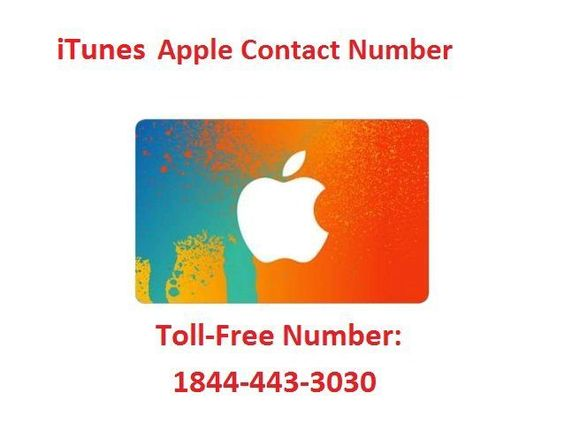 Phone Number Service Apple Customer Itunes For dont shortage
