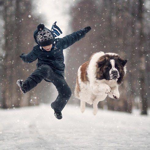 ジャンプする犬と赤ちゃん