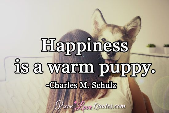 Happiness is a warm puppy. #purelovequotes