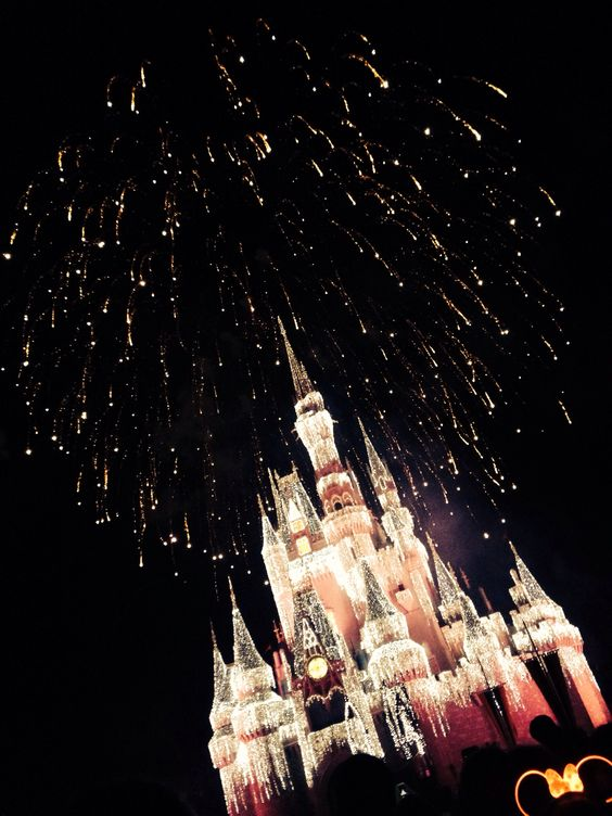Disney World! Purchase discount Disney tickets at https://tickets2you.com/disney-world-tickets/