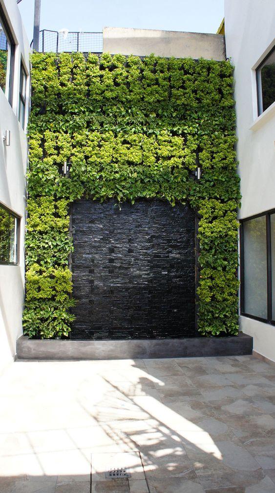 Jardines verticales arreglos con agua and plantas y for Landscaping rocks vallejo ca