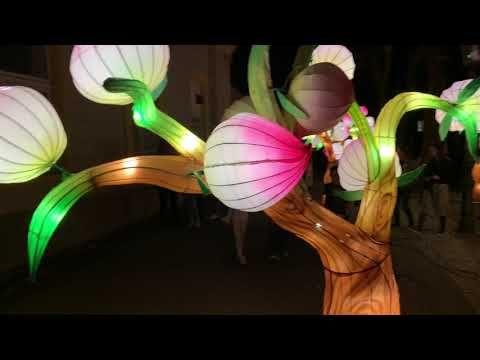 All 20 Festival Of Lights In Zagreb In 4k Video Amazing Eric Clark S Travel Videos Zagreb Croatia Festiva Festival Lights Travel Videos Zagreb Croatia