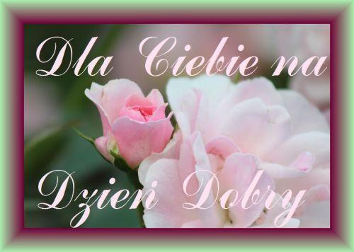 Kartka Pod Tytulem Dla Ciebie Na Dzien Dobry Place Card Holders Place Cards Flowers