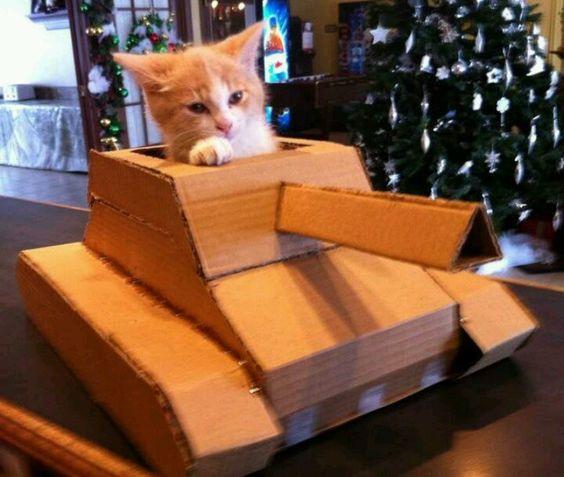 Como Hacer Un Tanque A Escala Casa De Gato De Cartón Gato Diy Casita Para Gatos