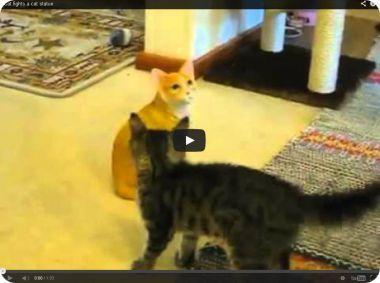 gato real gato estatua