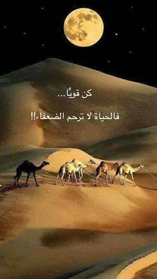 Pin By زخات المطر On باقة فرح Poster Movie Posters Movies